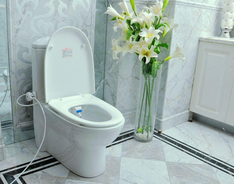 площадь туалет биде два в одном интерьер всегда ассоциировался