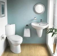 Угловые раковины для туалета: особенности выбора