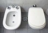 Биде или гигиенический душ: характеристики и разновидности