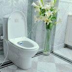 Разновидности унитазов со встроенным гигиеническим душем, их достоинства и особенности монтажа