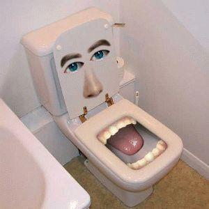 Креативный туалет или что говорит унитаз