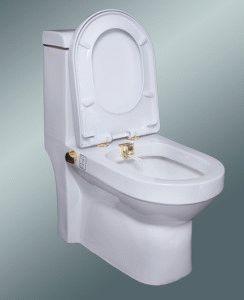 Встроенный гигиенический душ в унитазе