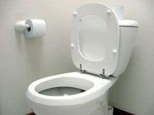Функционирование туалета