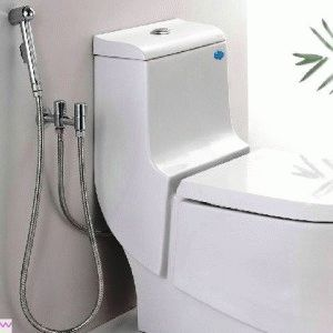 Установленный гигиенический душ